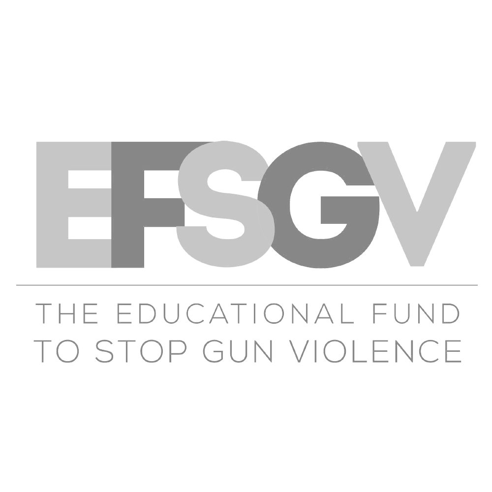 The Educational Fund to Stop Gun Violence